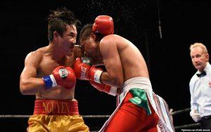 Học Boxing Ở Đâu Tốt Nhất Dành Cho Người Mới Bắt Đầu