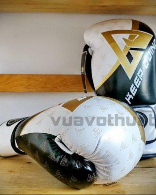 Găng tay Boxing BN thế hệ 3.0 trắng đen