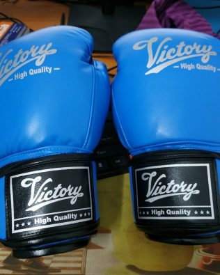 Găng Boxing Victory