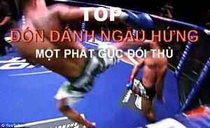 Top các Đòn đánh MMA ảo diệu Ngâu Hứng HẠ GỤC đối thủ | Mixed Martial Arts