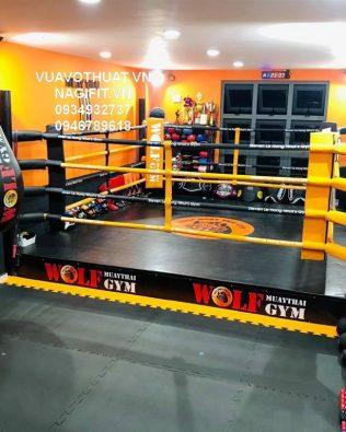 Sàn đài đấu Boxing | Kickboxing| Võ Cổ Truyền | Muay Thái | Tán Thủ tiêu chuẩn giá rẻ chất lượng cao