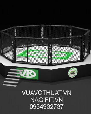 THIẾT KẾ LẮP ĐẶT SÀN ĐÀI LỒNG BÁT GIÁC MMA | SETUP UFC OCTAGON CAGE